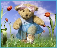 Dancing teddy tiptoes through the tulips